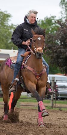 EWHA Speed Horse Show