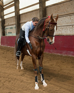 Mackenzie and Zeus after a competition at Ledges Equestrian Center in Roscoe, IL. Photo courtesy of Jeff Nickey - Knollwood Farm Ltd. http://www.jeffnickey.com