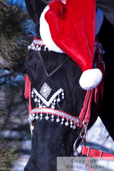Feike As Santa