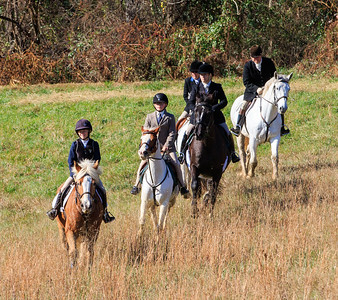 Andrews Bridge Fox Hunt Near Kirkwood, PA - Nov 2015