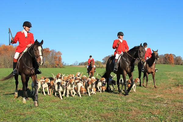 Fox Hunt at Tarad Hill in 2010