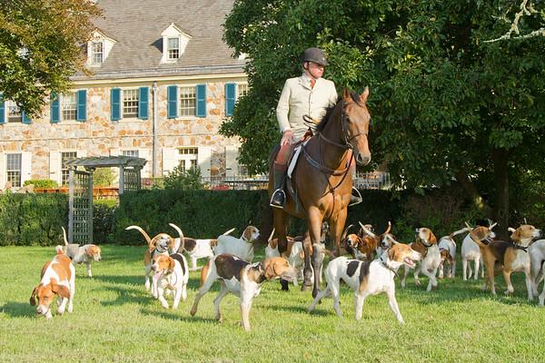 Radnor Hunt at Staglyn on 11/6/2012