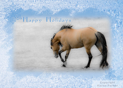 ORDER YOUR CUSTOM HOLIDAY CARDS TODAY!