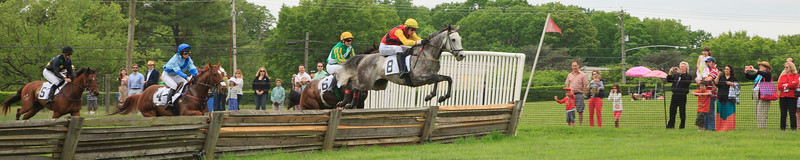 2012 Point to Point at Winterthur