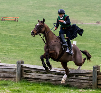 3-27-2016 -- Mr. Stewart's Cheshire Foxhounds Point to Point Races