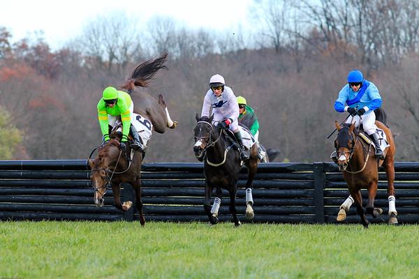 Pennsylvania Hunt Cup - Races
