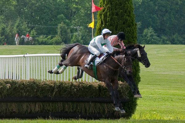 Willowdale Steeplechase