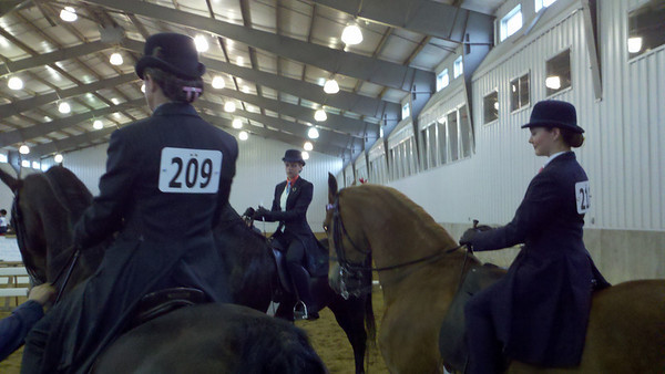 (left to right) Laura & Heist, Taylor & Batman and Savannah & Merlin waiting to perform in Class 42, Championship Show Pleasure.