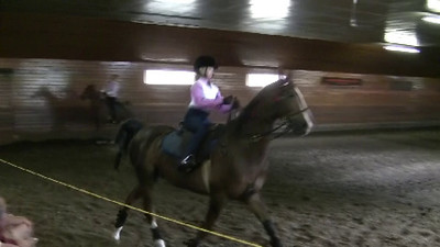 Saddle Seat Pleasure Class (1B).