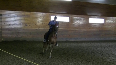 Eric giving a short presentation of Mojito, a five year old registered American Saddlebred Pleasure champion. Mojito was born at Knollwood and trained by Eric.