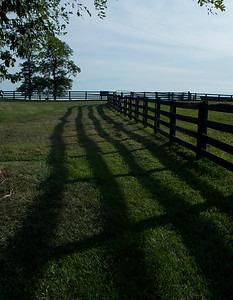 Pretty, shadowy fence line!