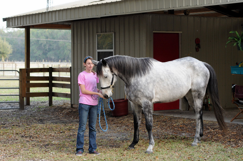 Merger's coat at 6yo is much whiter than it was in 2005 when he raced as 3yo.