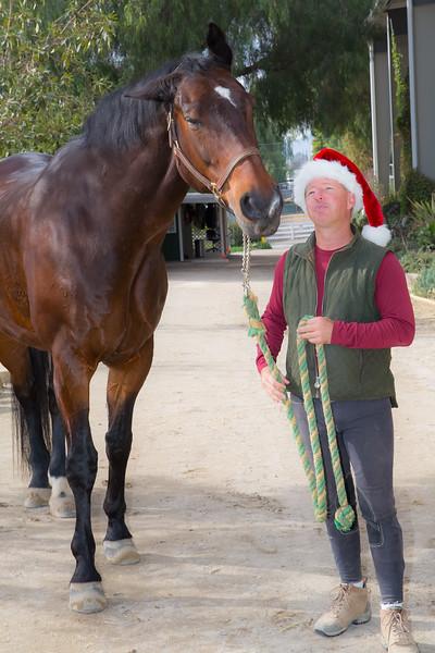 Merry Christmas Horses 2014