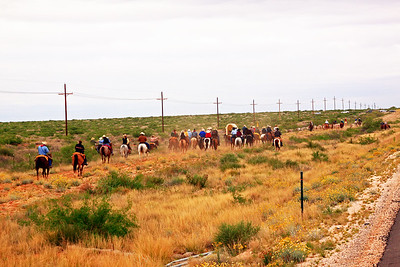 Day 1 and 2, penned in between fence and highway - longhorn herd in front, followed by wagon and riders.