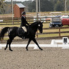Mariana and Travise in Open Novice dressage