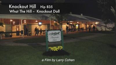 Knockout Hill