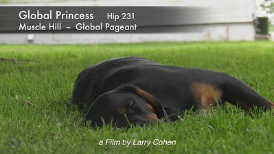 Global Princess