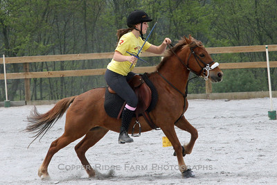 Ponies of Copper Ridge