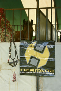 Heritage Performance Riding Gloves http://www.heritagegloves.com/