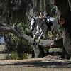 nature jump :-)
