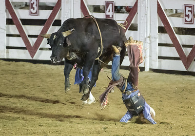 Cowtown Rodeo  - 6/28/2014