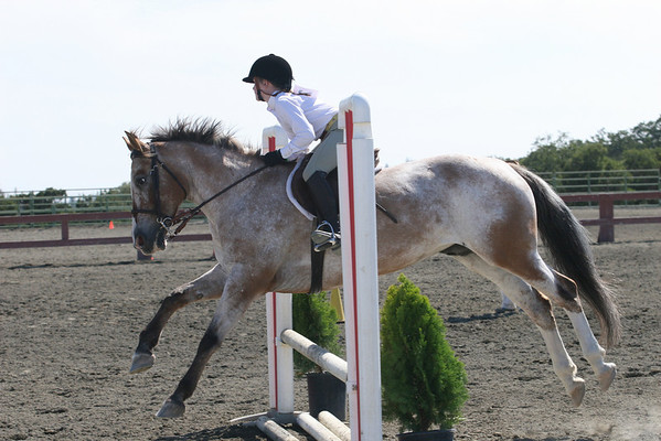 SMCHA Open English/Western Horse Show 2009 - Arena 1