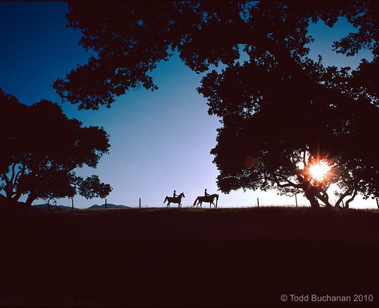 Trail riding, Salinas, CA