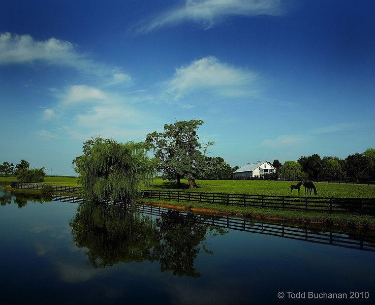 Willow Bank Farm, Shelbyville, KY