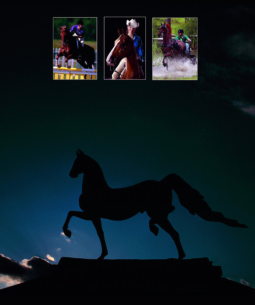 Back Dust Jacket Image...Retouched statue and replaced center photo with Western image and added a little more black space at the bottom of the iamge...The image may need to have crops to make it work okay for the back...