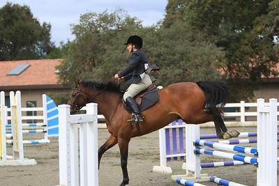 THF Horseshow