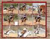 2011 Broken Spoke Cowboy Mounted Shooting - Page 040