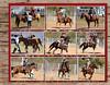 2011 Broken Spoke Cowboy Mounted Shooting - Page 031