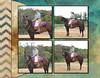 Deanna 2012 CMS - Page 026