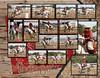 Deanna 2012 CMS - Page 009