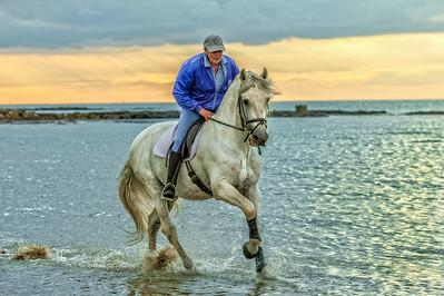 MargateBeach-Horses-splash-11