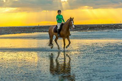 MargateBeach-Horses-splash-31