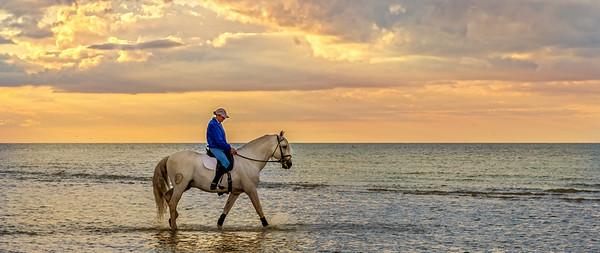 MargateBeach-Horses-splash-45