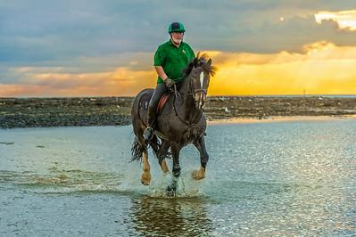 MargateBeach-Horses-splash-08