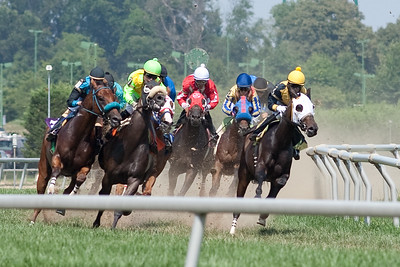 Thoroughbred and Harness Racing