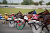 "For more like this, see ""Horses"" category and ""Thoroughbred and Harness Racing"" subcatetory"