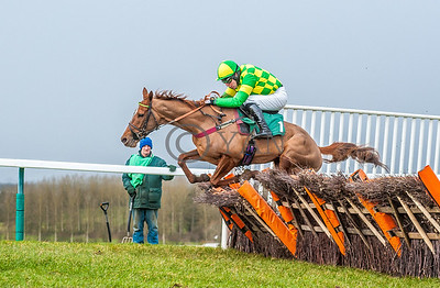 Towcester Horses 29th January 2015