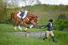20160515-LVPC Horse-0262