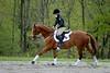 20160515-LVPC Horse-0221a