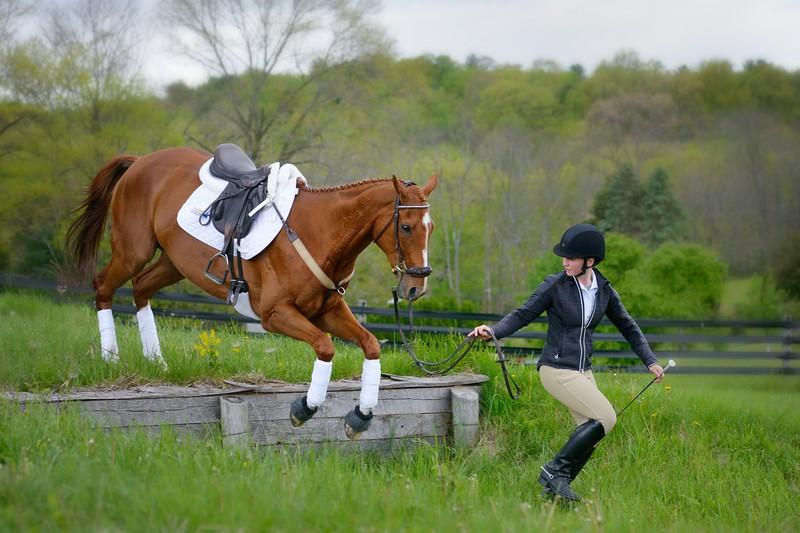 20160515-LVPC Horse-0263