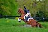 20160515-LVPC Horse-0289a