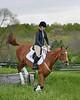 20160515-LVPC Horse-0274