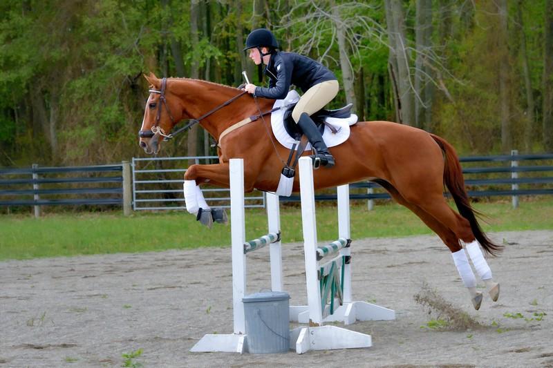 20160515-LVPC Horse-0209b