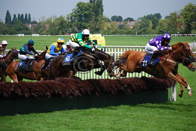 Worcester Hurdle Race