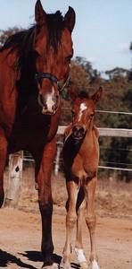 Zeehan Nabila and baby Zeehan Bint Nabila.