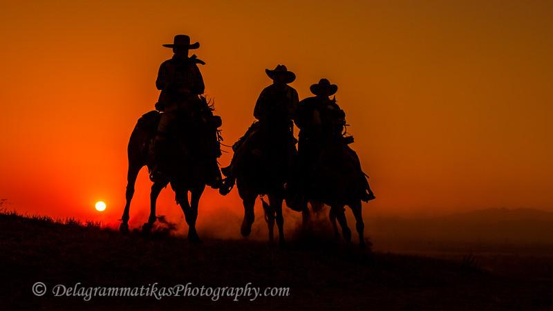 20130519_Cowboys and Horses_9940